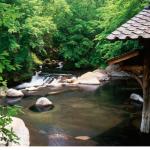 應援熊本部長最快的辦法!來去熊本縣10個新景點走一圈