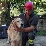義大利大地震》「汪!我在這」一黃金獵犬受困9天奇蹟獲救