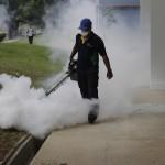 茲卡病毒》新加坡感染病例突破300例 星政府呼籲確實做好滅蚊步驟