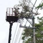 颱風瑪莉亞襲台》4萬戶停電!逾半已搶修復電
