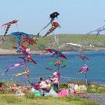 國際風箏節今白沙灣登場 民眾有機會目睹「夜光風箏」