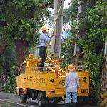電線電纜地下化抗災?林全:恐致搶修困難 非唯一選項