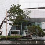 颱風假入勞基法休有薪假,贊成企業比例比想像中高