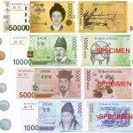 南韓最嚴反貪腐法案》金英蘭法28日正式生效 業者憂影響生計