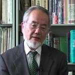 諾貝爾醫學獎得主大隅良典:要求科學研究「有用」,形同宣判基礎科學死刑