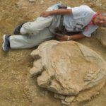 考古大發現:泰坦巨龍腳印現身戈壁沙漠