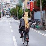 【張維中專欄】為何日本百歲人瑞紀念獎盃,從純銀變鍍銀?數據看時代無奈轉變