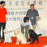 領養3退役導盲犬 蔡英文籲民眾加入收養家庭 推動導盲犬發展