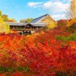 花19年才蓋好的絕美寺廟!想去日本東福寺賞漫山楓紅,現在就是最佳時機