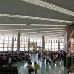 違規帶豬肉旅行社負連帶責任 公會:非旅行社權責