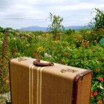 純屬購物推薦!除了德國RIMOWA,世界上這5個行李箱品牌更好用!