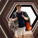 網球》骨盆傷勢復原進度不如預期 莫瑞將缺席澳網