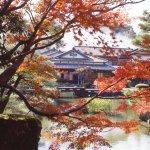 飯店就是景點!嚴選日本6個「有形文化資產」旅館,從房間往外看就是最美景致