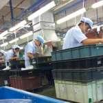 孩子的夢想不該是工人的惡夢》打造童話世界的中國勞工 數十年活在悲慘世界