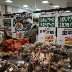 「輻射對健康和環境都有影響」實際走訪車諾比、福島 美國學者:動植物都受到基因損害