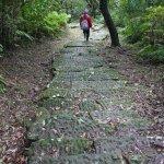 金瓜石採金路:《走向古道,來一場時空之旅》選摘(2)