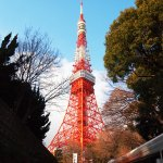 東京景點那麼多,自助遊該怎麼排?內行人公開私藏口袋名單,照著走就對啦!