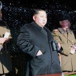 南韓國家情報院:金正恩執政5年,處決肅清340人