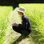 放棄百萬年薪去種田,有什麼了不起?這種「勵志」故事,反映台灣最可怕價值觀