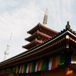 誰說一個人出國很無聊?東京這4個最適合獨自漫步的美麗景點,自己來玩更開心!