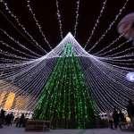 【謝幸吟專欄】哪座城市才是「世界上第一棵聖誕樹誕生地」?兩國首都市長互相論戰