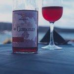 許怡先談生普:喝紅酒品普洱風潮正起
