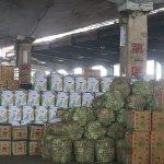 年菜的奇幻之旅:每天3000噸蔬果湧入台北 市民全靠他們才有菜吃!
