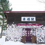 去一次,幸福一輩子!滿佈粉紅心願卡的北海道「幸福車站」,夢幻絕景保證難忘
