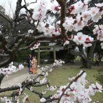 相敬如「冰」!日本這裡的夫妻關係最冷淡……竟是因為活下去的精神!
