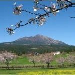 蜜月旅行不想跟風去歐洲?不妨參考這些連日本人都愛去的知名「蜜月勝地」