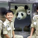 到動物園吃早餐、成為稀有動物的飼養員…10大親子出國景點,一次推薦給你!