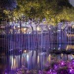 春節期間逾3萬人賞遊,新竹護城河「裝置藝術燈區」最新打卡景點