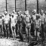 300名逃犯中只有9個存活…奧地利這個集中營的故事,告訴你轉型正義的真實意義