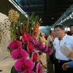 「蘭花是高產值經濟作物」柯文哲爭取2020年「蘭展在台北」