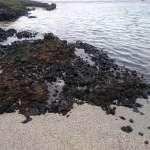 綠島生態浩劫》大量重油沉入海底 台灣首度遭遇海底除污