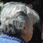 從頭髮看見身體警訊!白髮多不只跟年紀有關,醫學專家公開食補關鍵