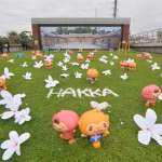 桃園客家桐花祭揭幕 地景藝術呈現浪漫四月雪
