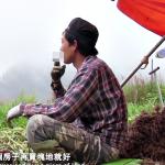 為何台灣人愛罵「外勞愛逃跑」,而不檢討自己?外籍配偶當導演,拍下逃跑移工真相