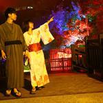 關子嶺寶泉橋「會跳舞的森林」 光雕音樂藝術秀帶來浪漫時光