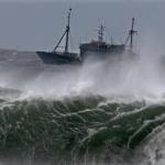 思沙龍》扇貝之戰、秋刀魚衝突、魷魚之爭⋯專家帶你一窺氣候變遷如何產生新型態海洋競爭!