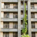 買不起房只好租房啊!政府計畫當「代理房東」解決問題,但房地產分析師這樣說…