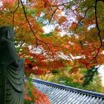 當天往返東京的小旅行!「鐮倉1日遊」經典路線,懶得排行程照這樣走就對了