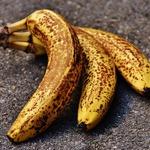 香蕉熟透了、皮上都是黑色斑點,還可以吃嗎?專家一席話,戳破你對香蕉的迷思