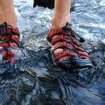 趁著假日到溪邊玩水、登山健行超好玩?醫師提醒千萬要小心「牠」啊…