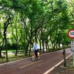 快速道路與東豐綠廊共線挨批!林佳龍:將完整保留自行車道