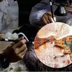 你從未見過的《論語》版本!失傳1800年的《齊論》從中國古墓出土