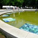 拿著一份地圖,穿梭在公園中找尋藝術作品…日本這場攝影展簡直跟尋寶一樣有趣