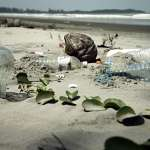 世界海洋日 民眾網路提案限用塑膠袋、免洗餐具