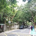 台北「青田街」夢幻散策:一條路玩整天,古早小吃、文青咖啡店,6處景點全蒐羅!