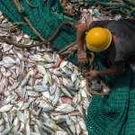 塞內加爾扣押7艘中國「非法捕撈」漁船 西非國家為何要跟中國對著幹?